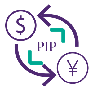 pip meaning in forex